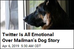 Mailman's Dog Story Is Making the Internet Cry