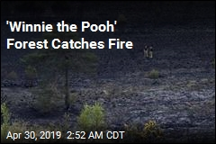 'Winnie the Pooh' Forest Catches Fire