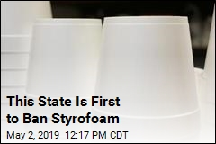 Maine Makes Big Move on Styrofoam
