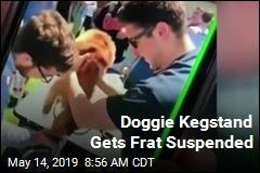 Frat Suspended After Dog Does Kegstand