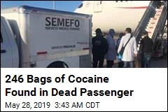 246 Bags of Cocaine Found in Dead Passenger