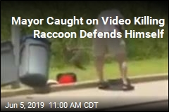 Video Captures Mayor Beating Raccoon to Death