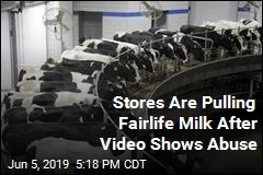 Stores Are Pulling Fairlife Milk After Video Shows Abuse