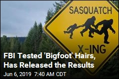 FBI Releases Some Bigfoot Files