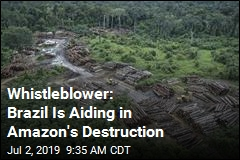 Whistleblower: Brazil Is Aiding in Amazon's Destruction