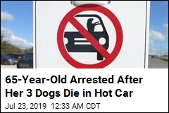 65-Year-Old Arrested After Her 3 Dogs Die in Hot Car