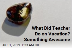 What Did Teacher Do on Vacation? Something Awesome