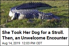 Gator Bites Woman Walking Her Dog in South Carolina