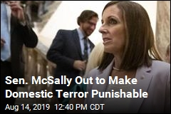 GOP Sen. McSally to Make Move Against Domestic Terror