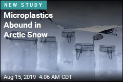 Microplastics Abound in Arctic Snow