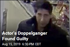 David Schwimmer Lookalike Found Guilty of Thefts