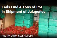 Feds Find 4 Tons of Pot in Shipment of Jalapeños