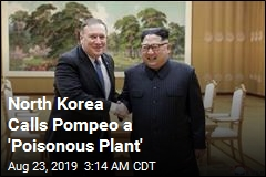 North Korea Calls Pompeo a 'Poisonous Plant'