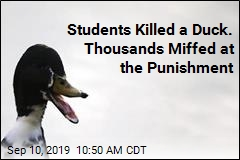 These Students Killed a Duck. Thousands Are Miffed at the Punishment