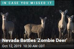 Nevada Battles 'Zombie Deer'