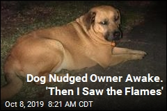 Dog Nudged Owner Awake. 'Then I Saw the Flames'