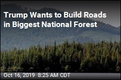 Feds Want to Ditch 'Roadless Rule' in Biggest National Forest
