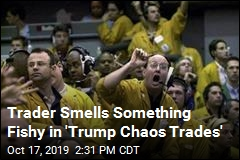 Trader Smells Something Fishy in 'Trump Chaos Trades'