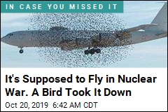 It's Supposed to Fly in Nuclear War. A Bird Took It Down