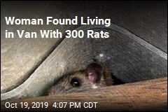 Woman Found Living in Van With 300 Rats