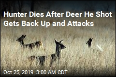 Hunter Dies After Deer He Shot Gets Back Up and Attacks