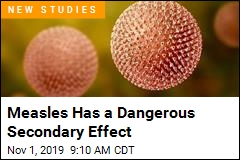 Measles Has a Dangerous Secondary Effect