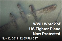 WWII Wreck of US Fighter Plane Now Protected