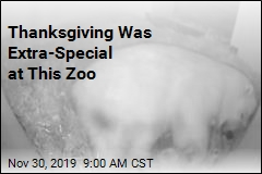Thanksgiving Was Extra-Special at This Zoo
