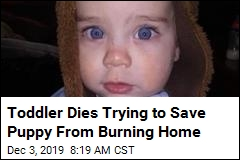 Toddler Dies Trying to Save Puppy From Fire