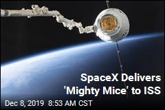 SpaceX Delivers 'Mighty Mice' to ISS