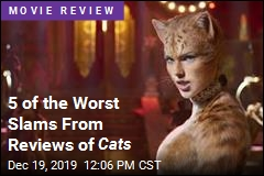 5 of the Worst Slams From Reviews of Cats