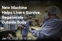 Machine Keeps Livers Alive Outside the Body for 7 Days