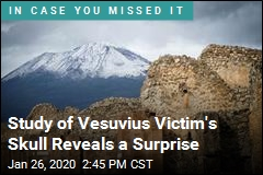 Vesuvius May Have Turned Victim's Brain to Glass