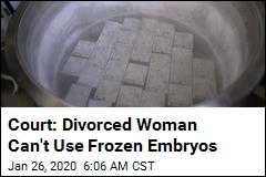 Court: Divorced Woman Can't Use Frozen Embryos