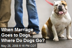 When Marriage Goes to Dogs, Where Do Dogs Go?