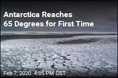 Antarctica Reaches 65 Degrees for First Time
