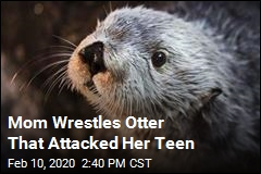 Mom Wrestles Otter That Attacked Her Teen