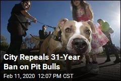 City Repeals 31-Year Ban on Pit Bulls