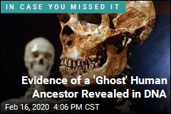 Scientists Find Clues of 'Ghost' Human Ancestor