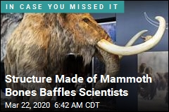 Structure Made of Mammoth Bones Baffles Scientists
