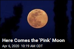 Here Comes the 'Pink' Moon