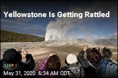 Earthquakes Rattle Yellowstone