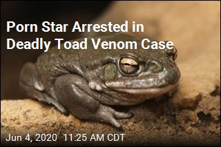 Porn Star Arrested in Deadly Toad Venom Case