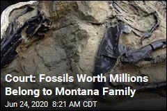 Court: Fossils Worth Millions Belong to Montana Family