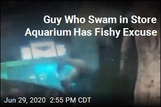 Guy Who Swam in Store Aquarium Has Fishy Excuse