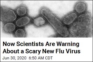 Oh, Great: A Flu Virus With 'Pandemic Potential' Discovered