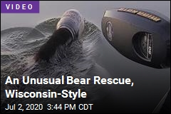 An Unusual Bear Rescue, Wisconsin-Style