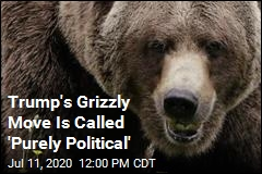 Trump's Grizzly Move Is Called 'Purely Political'