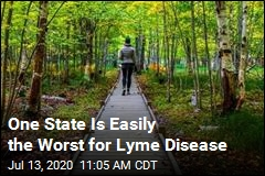 10 Worst States for Lyme Disease