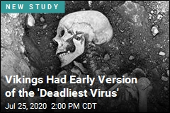 World's Deadliest Virus Found in Viking Remains